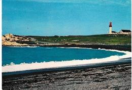 Miquelon - Le Cap Blanc 1984 + Flamme Au Verso - Saint-Pierre-et-Miquelon