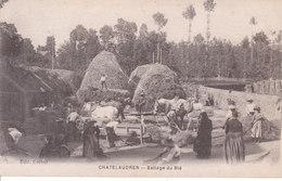 Châtelaudren - Battage Du Blé - Châtelaudren