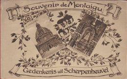 Scherpenheuvel Gedenkenis Uit Souvenir De Montaigue - Scherpenheuvel-Zichem