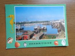 Zeebrugge, De Haven --> Beschreven - Zeebrugge