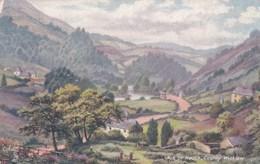 VALE OF AVOCA , CO WICKLOW - Wicklow