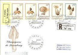 FDC, Registered Mail,  LUXEMBOURG  Mushrooms,fungi   /  Lettre De Première Jour,  LUXEMBOURG Champignons   1991 - Pilze