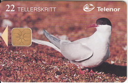 SVALBARD ISL.(chip) - Arctic Tern(115), Tirage 16000, 03/98, Used - Svalbard