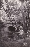 Brunoy - Vieux Pont Sur L'Yerres - Brunoy