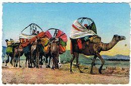 SCENES ET TYPES D AFRIQUE DU NORD   UEN CARAVANE DANS LE SUD  *****      A   SAISIR     ***** - Postcards