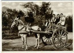 SIRACUSA  Carretto Siciliano  (errore Siracura)  Cavallo  Horse - Siracusa