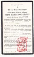 DP Adel Noblesse - Marie Yolande D'Aspremont Lynden / De Copis ° Liège 1849 † Linden Lubbeek 1917 X Jules De Beauffort - Devotieprenten