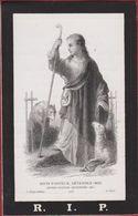 Maria Genard Antwerpen Deurne 1873 Jesus Jezus Protector Wolf Lupus Loup L. Turgis Paris Doodsprentje Image Mortuaire - Devotion Images