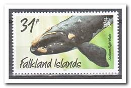 Falkland 2016, Postfris MNH, Whales ( New Print ) - Falklandeilanden