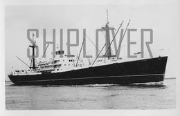 Photo Authentique Cargo Français CARIMARE - Bateau/ship/schiff - Boten