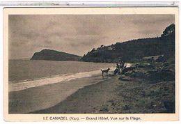 83  LE CANDEL  GRAND  HOTEL  VUE  SUR  LA  PLAGE  +  PERSONNAGE  ET  CHIEN  TBE  1T924 - France