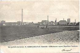 Baasrode - Vue Partielle Des Usines: P. Vermylen & Fils - Dendermonde