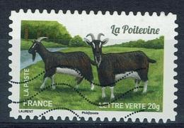 "France, French Goat Breed, ""la Poitevine"", 2015, VFU Self-adhesive - Frankrijk"