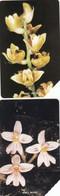 11545- N°. 5 PHONE CARD SIERRA LEONE - ORCHIDEE-FIORI - USATE - Sierra Leone