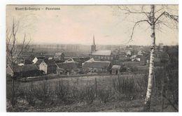Weert St-Georges - Panorama - Oud-Heverlee