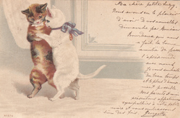 CPA CHATS Qui Dansent    1901 - Chats