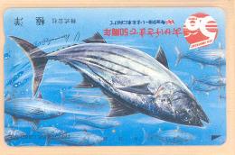 JAPAN Telefonkarte Fisch - 110-31197 - Siehe Scan - Fish
