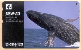 JAPAN Telefonkarte Delfin, Wal-  Siehe Scan - Fish