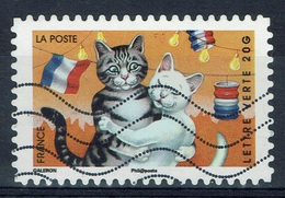 France, Holidays, Cats, 2014, VFU - Frankrijk