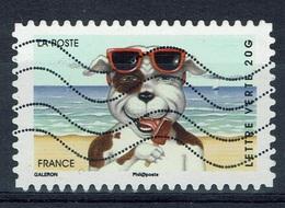 France, Holidays, Dog, 2014, VFU - Frankrijk
