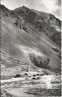 LES ALPES - Col De L'Isoard (05) - Alt 2360 M - Francia