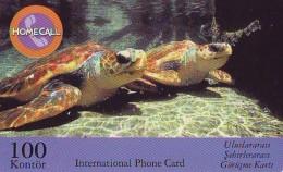 Télécarte INDONESIE * TURTLE *  (2260)  PHONECARD  * TORTUE *  TELEFONKARTE * SCHILDKRÖTE - Schildpadden