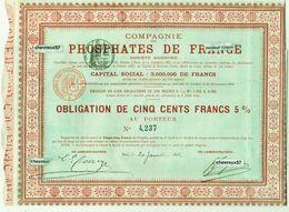COMPAGNIE DES PHOSPHATES DE FRANCE - Obligation N°4,237 - 20 Janvier 1894 - Shareholdings