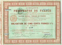 COMPAGNIE DES PHOSPHATES DE FRANCE - Obligation N°4,119 - 20 Janvier 1894 - Shareholdings