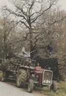 Pingrin Saint-Lyphard 44 - Métiers Agriculture Fagots Bois - Tracteur - Saint-Lyphard