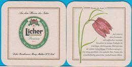 Licher Privatbrauerei Lich ( Bd 619 ) Mit KG - Bierdeckel