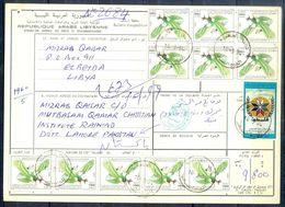 L92- Libya Parcel Receipt Cover Send To Pakistan. 1990 Birds Oiseaux Vögel Aves Eagle Adler. - Libya