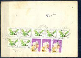 L100-  Libya Parcel Receipt Cover Send To Pakistan. 1990 Birds Oiseaux Vögel Aves Eagle Adler & 1992 Col. Khadafy Defini - Libya