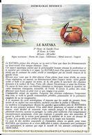Astrologie Hindoue - Le Kataka - Astrologie