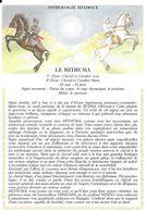 Astrologie Hindoue - Le Mithuma - Astrologie