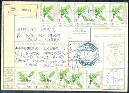 L134- Libya Parcel Receipt Cover Send To Pakistan. 1990 Birds Oiseaux Vögel Aves Eagle Adler - Libya