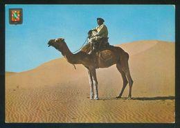 Sahara. *El Aaiun. Nómada En El Desierto* Ed. Fisa Nº 5. Nueva. - Western Sahara