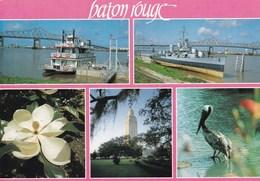 BATON ROUGE MULTIVUES (dil341) - Baton Rouge
