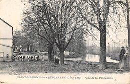 Saint Maurice Sur Vingeanne    21      Vue De La Vingeanne       (voir Scan) - Francia