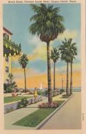 Texas Corpus Christi Princess Louise Hotel Beach Scene Curteich - Corpus Christi