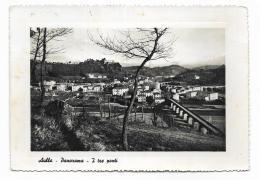 AULLA - PANORAMA- I TRE PONTI  - VIAGGIATA FG - Massa