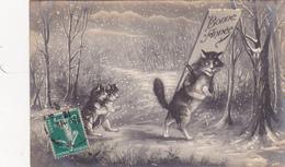 CPA Chat Humanisé Cat Catze Position Humaine Illustrateur M. BOULANGER Non Signée ? Style WAIN - Chats