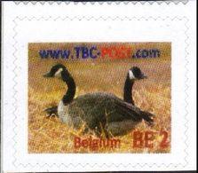 TBC POST : BE-2  EEND  MINT - België