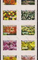 TBC POST : BE-1   Set Of 10 Different KEUKENHOF   Flowers Bloemen Fleurs   MINT - SHEET - Privées & Locales