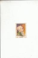 Chromo Image  Biscotte Pelletier  Robespierre - Unclassified