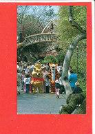 DISNEYLAND Post Card Descriptif Au Verso - Disneyland
