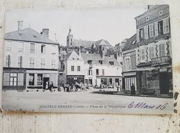 45 - CPA Animée CHATEAU-RENARD (Loiret) - Place De La République (G. Plessy, 58) - Autres Communes