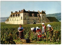 VOUGEOT - Château Du Clos Vougeot - France