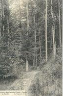 UCCLE : Petite Espinette - Dans La Foret - RARE VARIANTE - Cachet De La Poste 1909 - Ukkel - Uccle