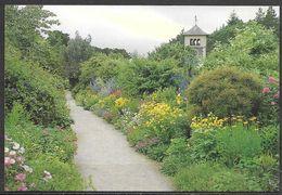 Ireland, Ilnacullen, Co. Cork, Herbaceous, Unused - Cork