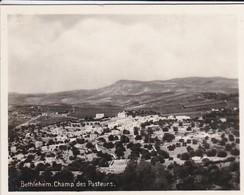 MINI-PHOTO D'éditeur--PALESTINE---BETHLEHEM--champ Des Pasteurs--voir 2 Scans - Palestine